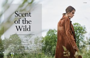 Scent of the Wild 1.jpg